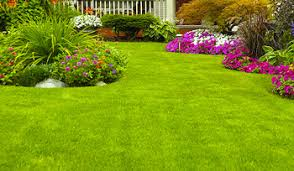 Down To Earth Landscaping by Landscaping Maintenance U2013 Best Myrtle Beach Landscaping Company