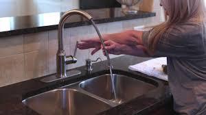 Bone Colored Kitchen Faucets Almond Kitchen Faucets Kitchen The Home Depot Almond Colored