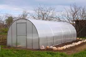Green House Plans by Hoop House Profitable Plants Digest