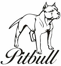 pitbull coloring pages pitbull coloring pages to download and