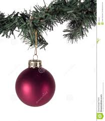 ornament and tree branch stock photo image 326442