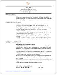 Marketing Professional Resume Argumentative Essay On Gun Violence Counselors Resume