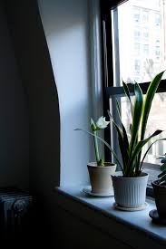 Life In A Studio Apartment by Life In A Tiny Apartment U2013 Reading My Tea Leaves U2013 Slow Simple