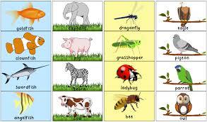 printable animal activities matching animal halves printable activity totschooling toddler