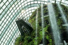 postcard from singapore an inside look at green design in the