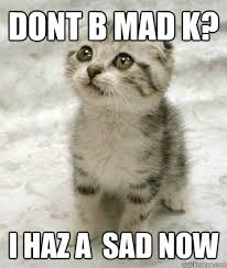 Dont Be Mad Meme - dont b mad k i haz a sad now sad cat quickmeme