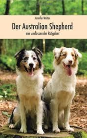 australian shepherd zucht deutschland australian shepherd zucht yellowstone australian shepherds