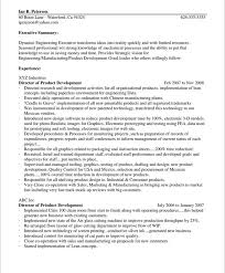 Resume Summary Paragraph Examples by Dynamic Engineering Executive Sample Resume Introduction Paragraph