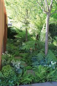 Homebase Garden 144 Best Garden Favorites In Shade Part Shade Natives Zone 5