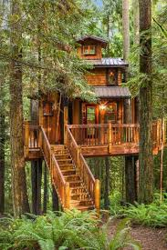 treehouse homes for sale tree house plus normal one for sale in woodinville houston chronicle