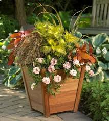 Plant Combination Ideas For Container Gardens - 26 best ornamental grasses for landscapes images on pinterest