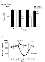 Transient Decrease in High Blood Pressure by In Vivo Transfer of