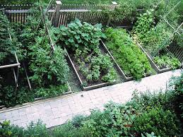 landscape plans free vegetable garden designs and layouts