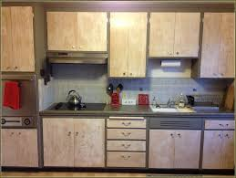 White Washed Kitchen Cabinets Whitewash Kitchen Cabinets Before After Home Design Ideas