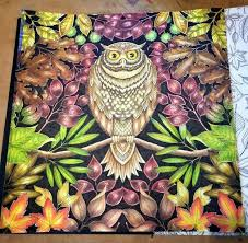 39 Best Owl Images On Pinterest Owls Garden And Owl Owl Coloring Ideas