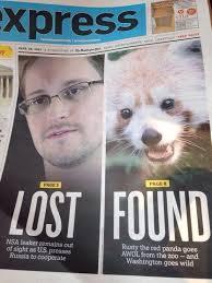 Journalism Meme - best bit of journalism ive seen in some time meme guy