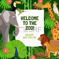 zoo brochure template 3 802 flyer template kid stock illustrations cliparts and royalty