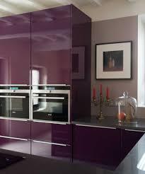 cuisine couleur aubergine cuisine couleur aubergine daco de galerie avec cuisine couleur