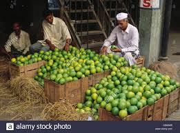 vashi market hma 85242 sweetlime fruit seller at wholesale market vashi navi