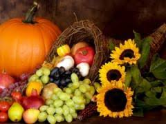 thanksgiving is a celebration of free enterprise mises institute