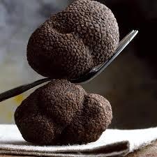 comment cuisiner les truffes noires les truffes de norcia italie