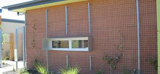 Climbing Plants For North Facing Walls - australian institute of landscape architects