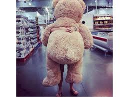 big teddy teddy