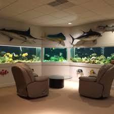 east coast aquarium designs aquarium services 33 almond dr