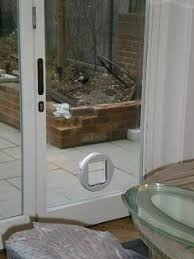 Cat Flap Patio Door Cat Flap In Glass Paws Pinterest Cat Glass And Kitchens