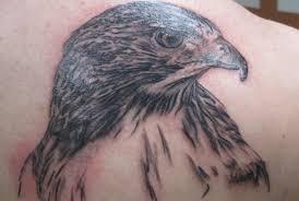 5 spectacular bird of prey tattoo designs style presso