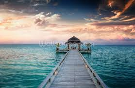 Wall Mural Sunrise In A Forest Wall Paper Self Adhesive Maldives Jetty Sunrise Wallpaper Wall Mural Wallsauce Usa