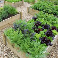 backyard small garden spaces with diy raised bed vegetable garden