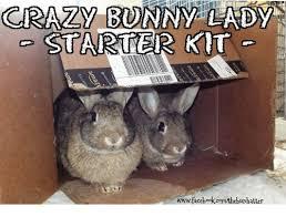 Crazy Lady Meme - 25 best memes about crazy bunny lady crazy bunny lady memes