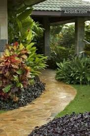 tropical garden ideas google search tropical gardens my