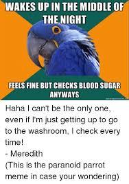 Paranoid Parrot Memes - 25 best memes about paranoid parrot memes paranoid parrot memes