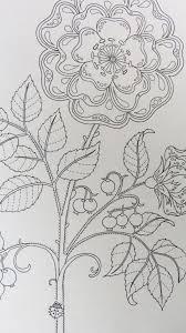 secret garden coloring book chile 37 best johanna basford images on drawing landscapes