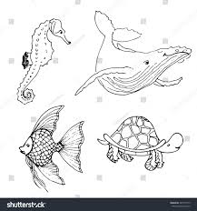 vector set ocean animals hand drawn stock vector 429157519