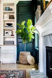 best 25 plant decor ideas on pinterest house plants house plants interior design nurani org