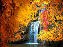 pumpkin screensavers 15 best screensavers images on pinterest nature landscapes and
