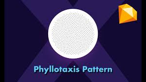 how to arrange icons in phyllotaxis pattern in sketch app youtube