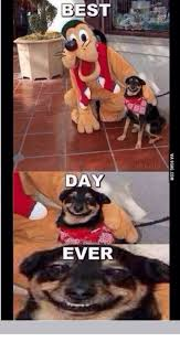 Best Day Ever Meme - best day ever via 9gagcom best day ever meme on me me
