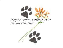 condolences for loss of pet pet sympathy free sympathy condolences ecards greeting cards pet