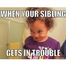 Funny Sibling Memes - 155 best siblings images on pinterest bee family break a leg and