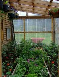 Green House Plans Build Your Own Greenhouse Tips On Building Your Greenhouse My