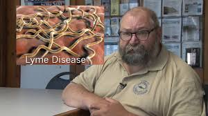 types of ticks and diseases larry dapsis ochn on vimeo