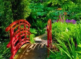 Botanical Garden Definition by Japanese Style Garden Bridges Japanese Garden In Clingendael Park