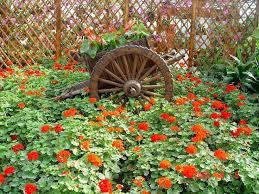 69 best flower garden images on pinterest landscapes nature and