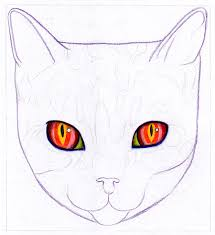 how to draw a cat learn how to create a unique colorful cat