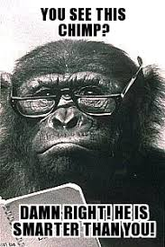 Chimp Meme - smart chimp weknowmemes generator