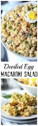 Pasta Salad Recipe Mayo by Best 25 Pasta Salad Recipes Ideas On Pinterest Pasta Salad